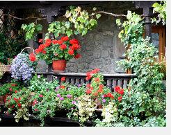 Die meisten Sichtschutzarten für den Garten sind oft auch für den Balkon verwendbar