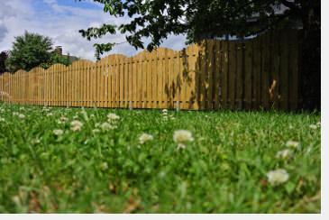 Sehr Rechtliche Anforderungen zum Sichtschutz: Zaun, Mauer, Hecke  BQ64