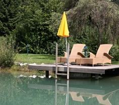 Schwimmreich im Garten mit Sonnenschirm