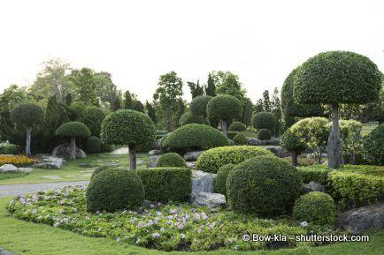 Gartenplanung tipps tools und viele informationen for Japanischer ziergarten